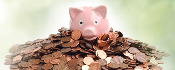 Das Bild zeigt ein Sparschwein auf einem Haufen Geld